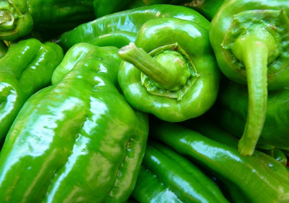 Alimentation bébé: diversification avec régime végétarien